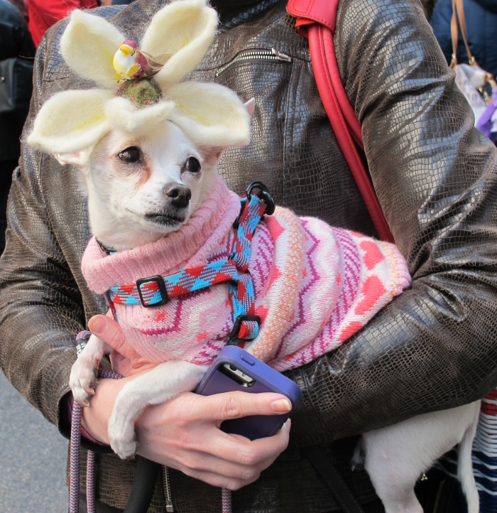 Easter Parade, 5th Avenue